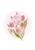 Fototapety ピンクのチューリップの花束