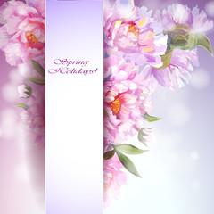 Peonies flowers background.