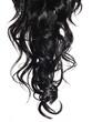 Leinwanddruck Bild - Curly Black Hair isolated in white. Brunette