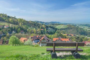 Frühling im Schwarzwald in Sasbachwalden