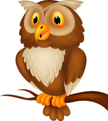 Cute owl cartoon