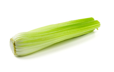celery isolated on white