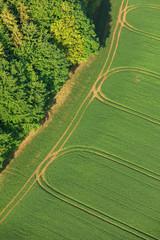 Luftaufnahme Wiese mit Fahrspuren am Wald