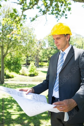 Businessman reading blueprint