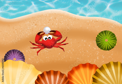 crab with pearl on the beach