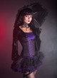 Beautiful girl in purple and black gothic Victorian outfit