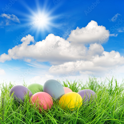 easter eggs in green grass with blue sky