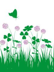 floral,grün,klee,kleeblatt,blüte,frühling,blumenwiese
