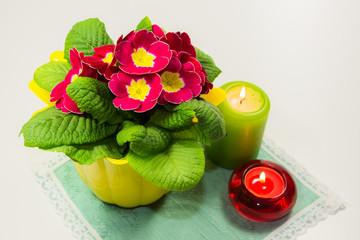 Dekoration mit Primel und Kerzen