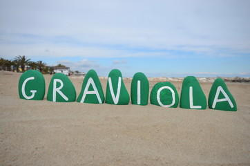 Graviola healthy fruit name on green stones