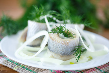 salted herring with onion rings and dill
