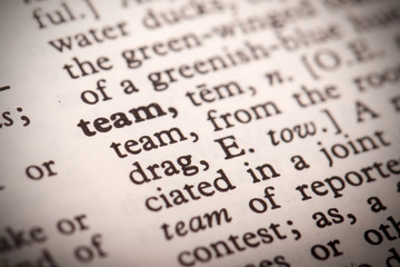 "The word ""Team"" in a dictionary"