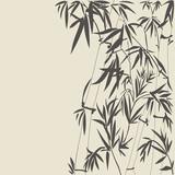 Fototapety Bamboo vector illustration