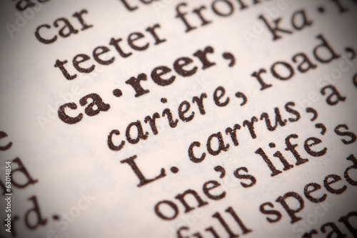 "The word ""Career"" in a dictionary"