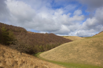 yorkshire wolds hillsides