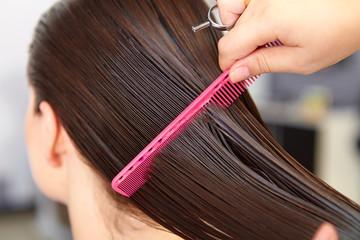 Hair salon. Woman haircut. Cutting.