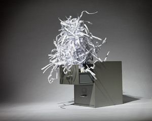 Shredded Paper in the Filing Cabinet