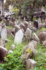 Old Jewish Cemetery in Jewish Quarter Prague Czech Republic cram