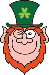 St Paddy's Day Leprechaun Winking and Smiling