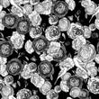 Vintage seamless monochrome roses pattern