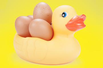 Mama pato con huevos