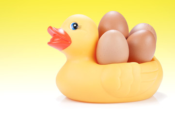 Pato con huevos, fondo amarillo