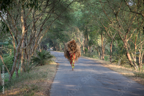 Farmer carries rice from the farm home, Baidyapur, India