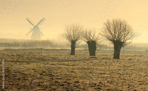 Foggy spring sunrise in the Dutch countryside.