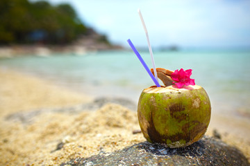 Coconut drink, purple flower on rock with beach and sea