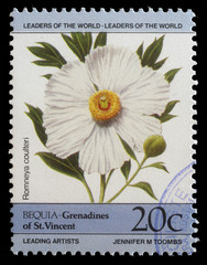 Stamp from Bequia shows Romneya coulteri flower