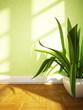 a plant on the floor