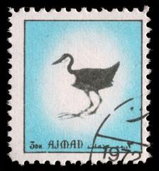 Stamp printed by Ajman, shows bird, circa 1972