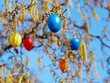 canvas print picture - Easter Eggs in hazelnut bush