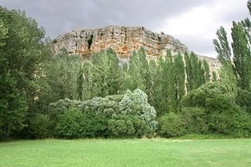 Paisaje verde con montaña