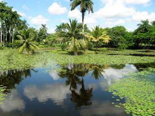 Naturschutzgebiet Guama