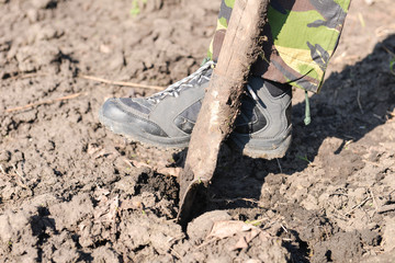 Close up of a man digging spring soil with spade, preparing the
