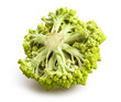 romanesco cabbage isolated
