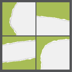 Vector teared paper background. Four square backgrounds with tea
