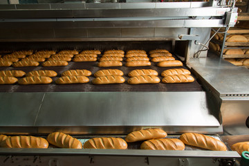 Hot baked breads on a line