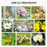 mosaique printemps poster