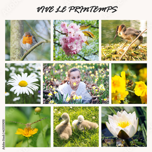 poster of mosaique printemps