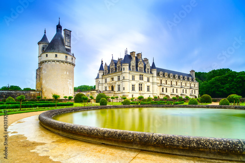 Chateau de Chenonceau Unesco medieval french castle and pool gar