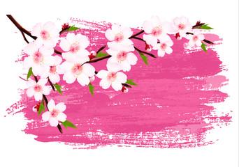 Pink paint sakura branch banner. Vector.