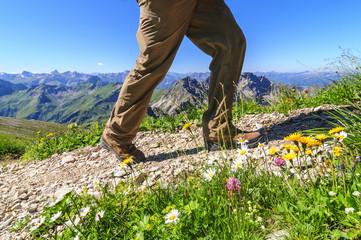 Bergwandern im Sommer