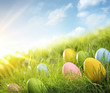 canvas print picture - Easter eggs in grass