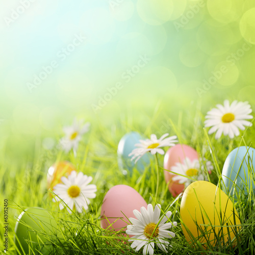 canvas print picture Easter eggs in grass