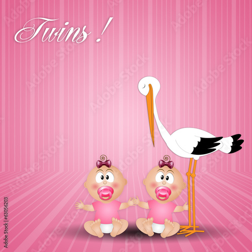 stork with twin girls