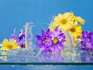 Flowers Frozen in Ice