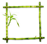 Fototapety Bamboo frame made of stems isolated on white background.