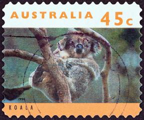 Koala (Australia 1994)